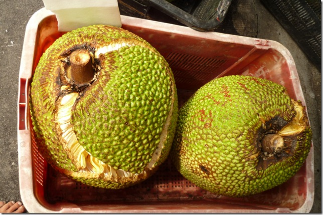 jakfruit2